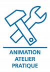 animation-atelier-pratique